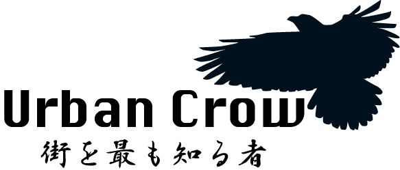 urban-crow.jpg